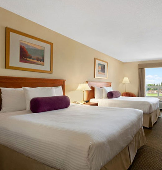 The Classic Room's interior at d3h Days Inn Edmonton South is two-tone light sand and white, with two beds outfitted in white and biscotti tan linens -  a pop of color is provided by eggplant purple bolster pillows.